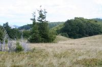 Drum de Muntii 4x4 Romania 2009 - cross country